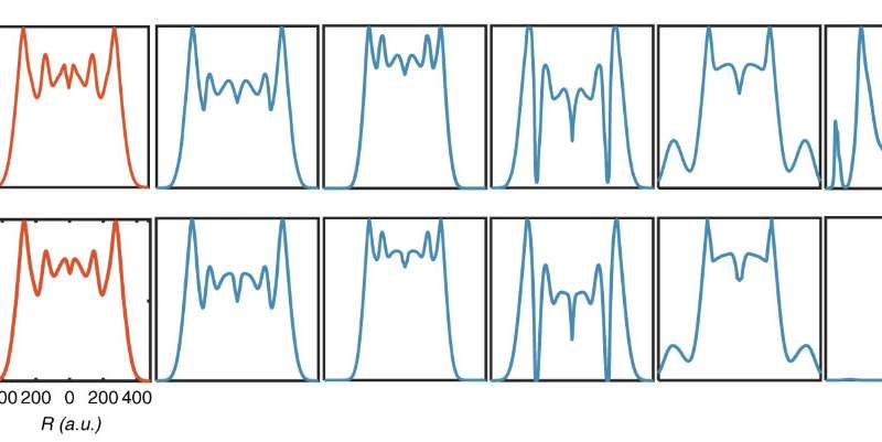 Machine learning predicts behavior of biological circuits