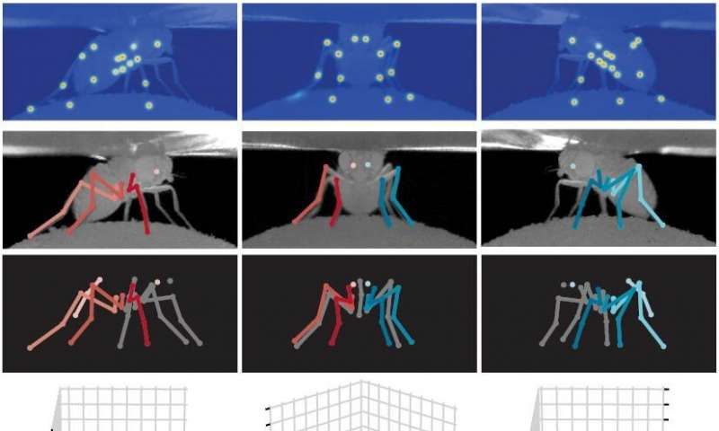 Deep-learning method to design fly-like robots